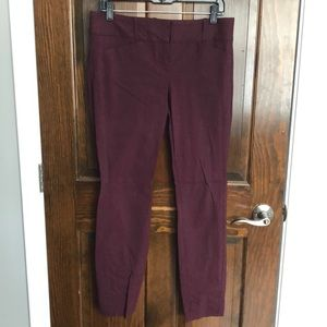 The Limited Exact stretch burgundy pant